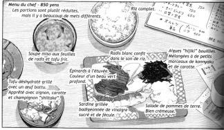 gourmet-solitaire-scan-4
